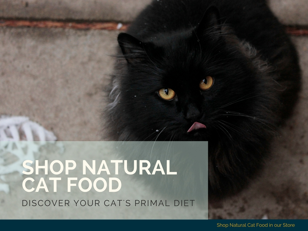 Natural Cat Nutrition