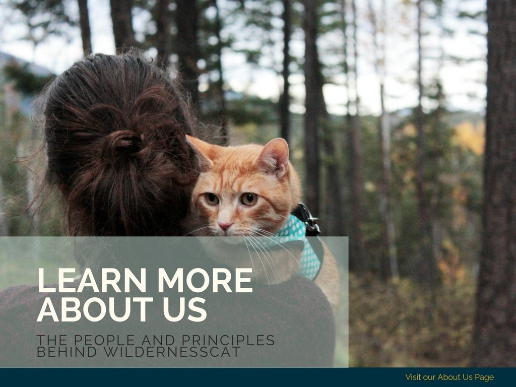about wildernesscat natural cat care