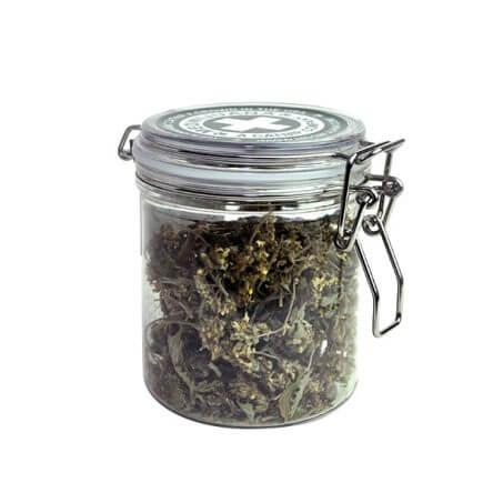 Meowijuana Purrple Passion Organic Catnip Buds