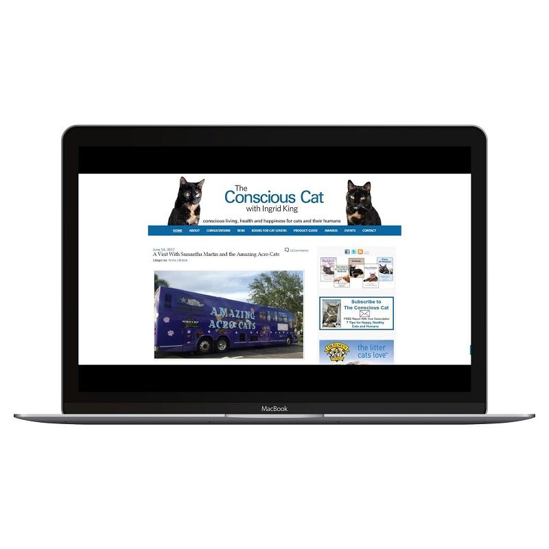 conscious cat website screenshot