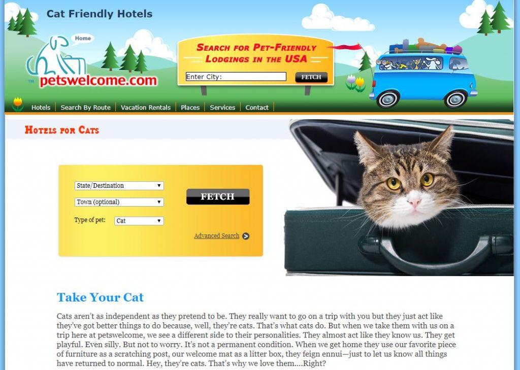 best cat friendly hotels
