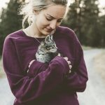 Adventure Cat First Aid Guide: How to Treat a Cat Bee Sting
