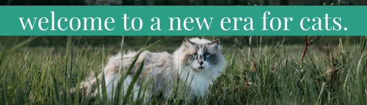 shop natural cat care