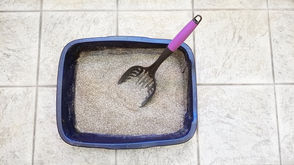 Messy Cats Litter Scoop in litter box