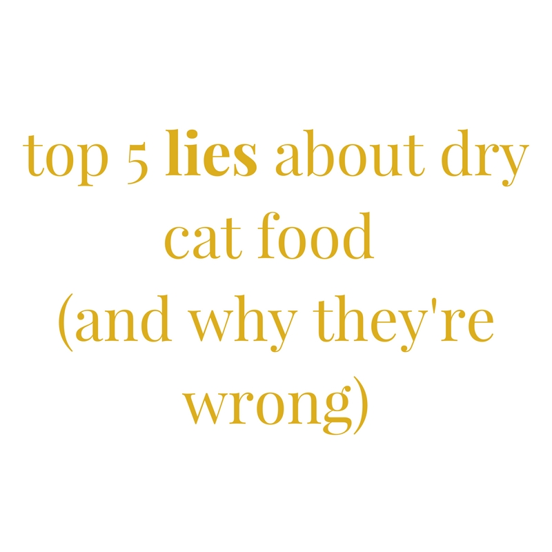 top 5 lies about dry cat food