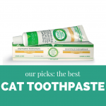 Best Cat Toothpaste – Choose the Right Toothpaste for Your Cat!