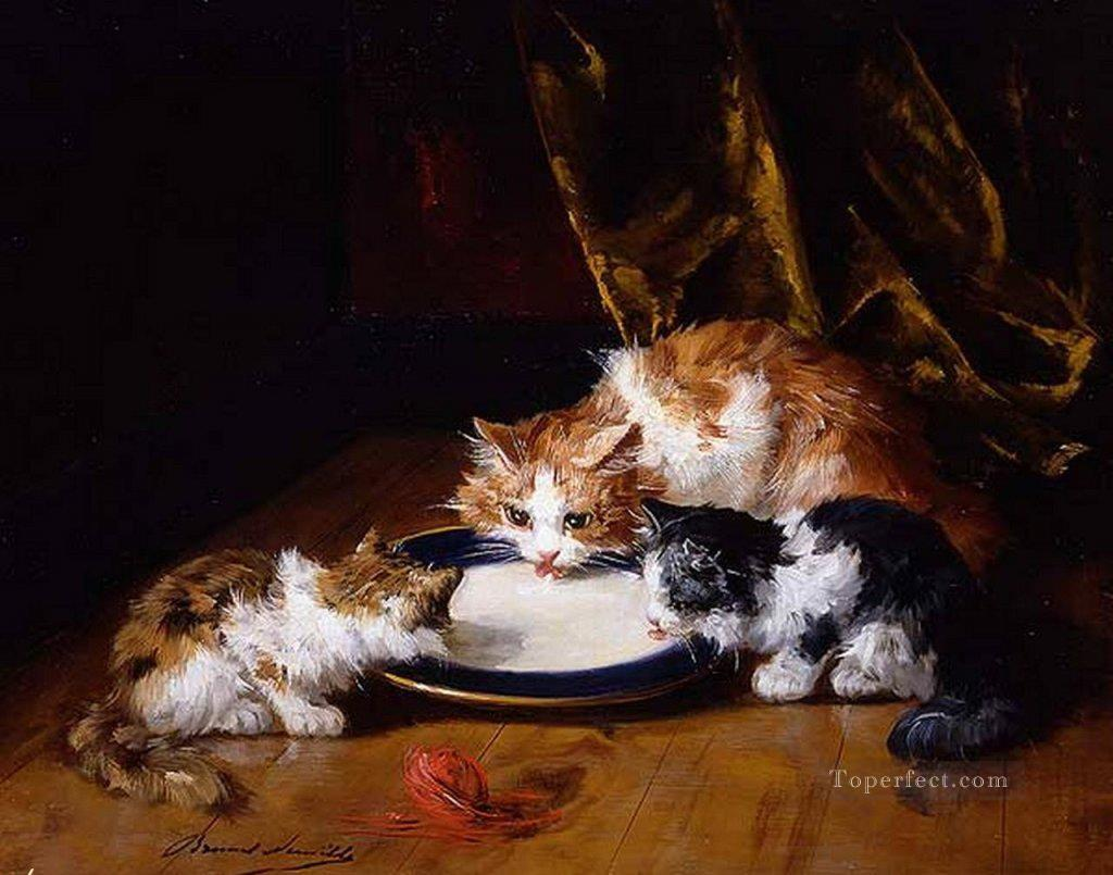 Can Cats Drink Milk? Why Victorian Cats Were Always Lapping up a Saucer of Milk