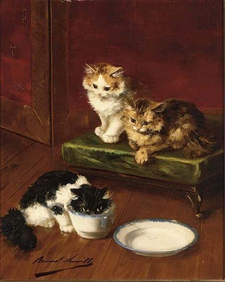 can cats drink milk alfred arthur brunel de neuville