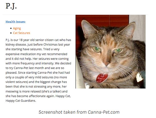 cbd for cats with seizures