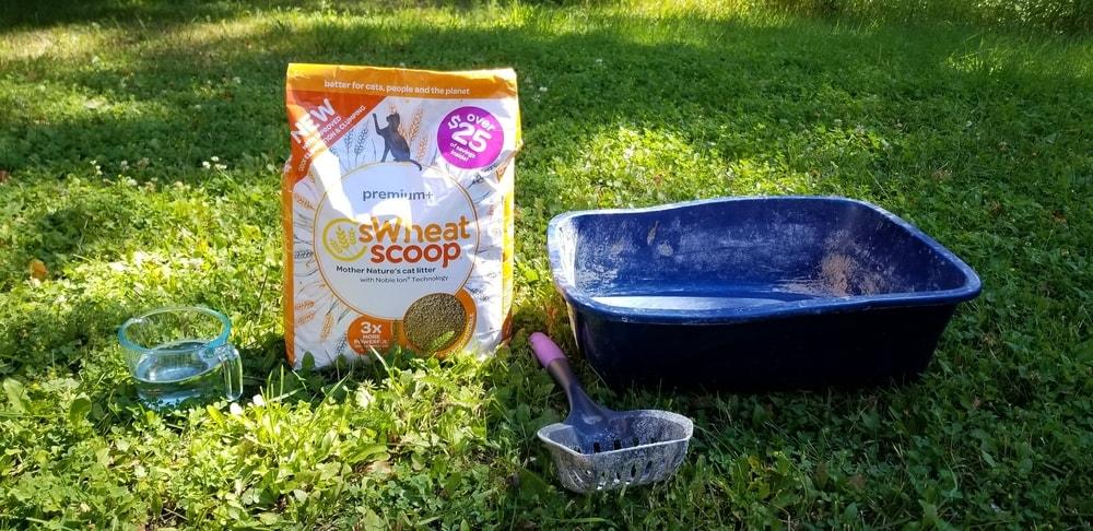 sWheat Scoop Premium+ Cat Litter Review