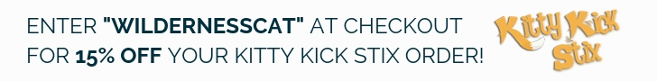 Best Cat Kicker Toy Kitty Kick Stix Review