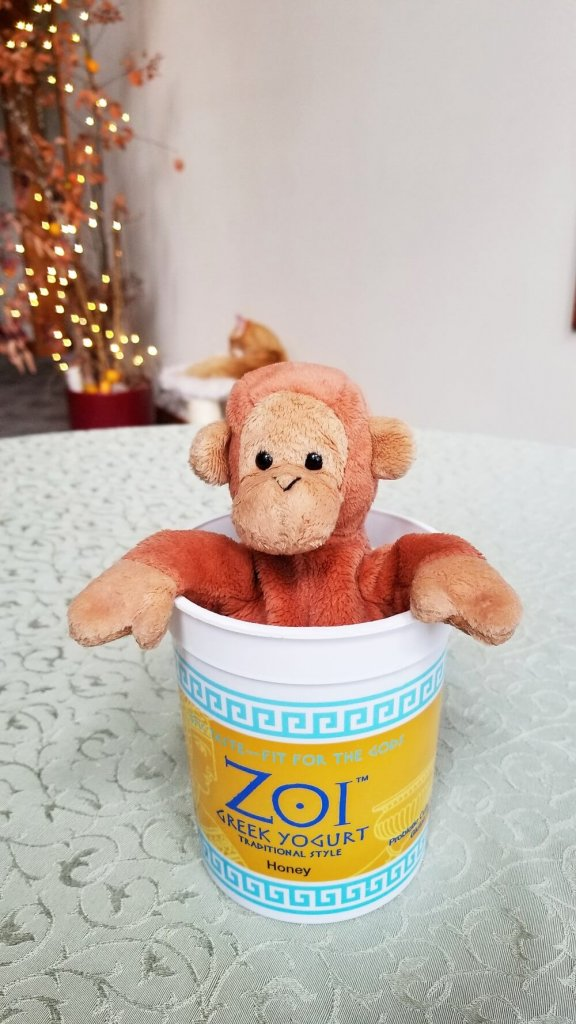 bongo the monkey soaks in the live pee free