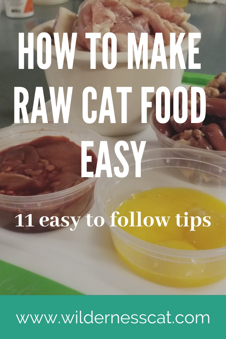 Homemade raw cat food pin 2