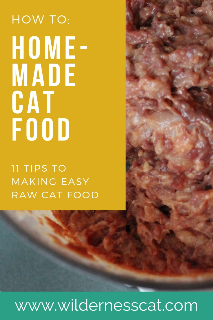 Homemade raw cat food pin 1