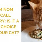 Nom Nom Recall History: Is It a Safe Choice for Your Cat?