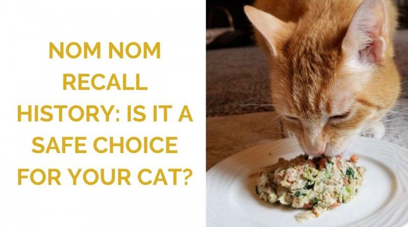 Nom Nom pet food recall history
