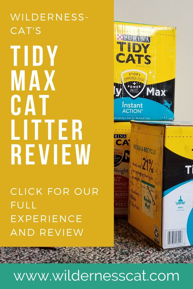 Tidy Max cat litter review pin