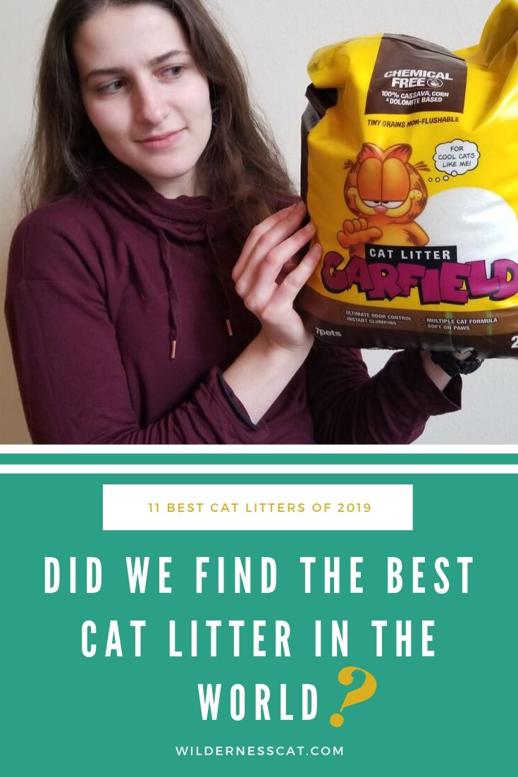 the best cat litter in the world pin