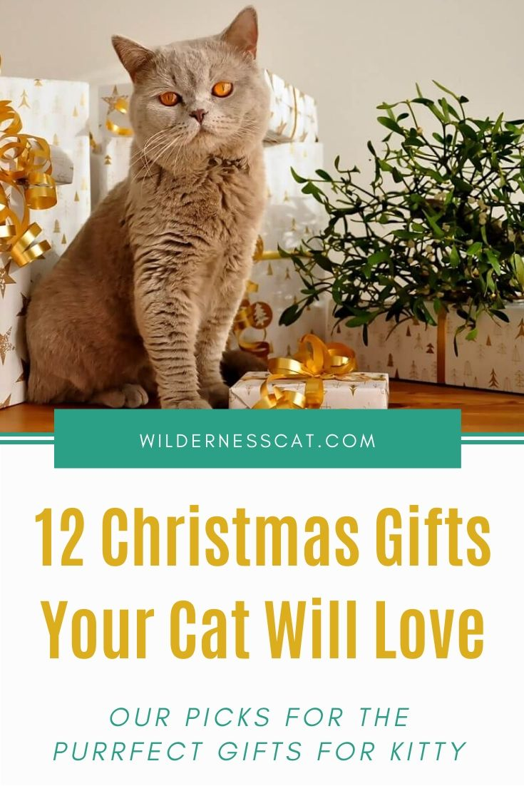 Christmas gifts for cats pin