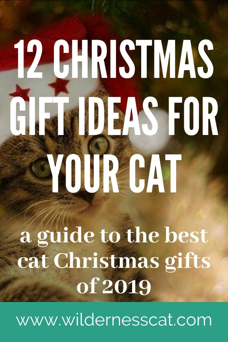 Christmas gift for cats pin 2