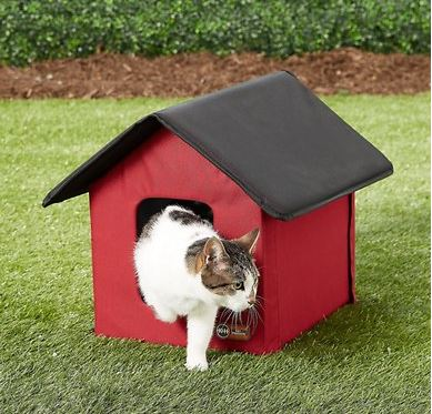 K&H Outdoor heated kitty house chewy link