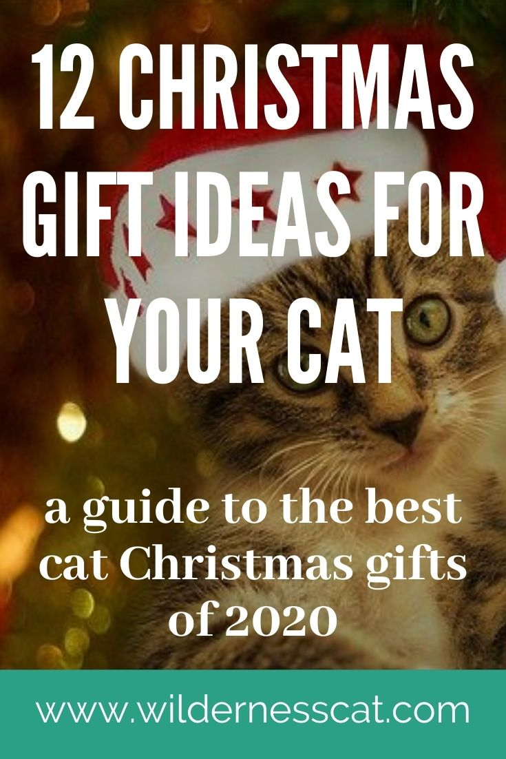 best christmas gifts for cats pin 3