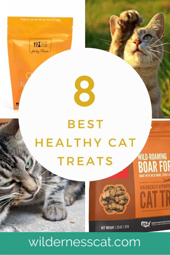 8 Best Healthy Cat Treats Pin 2