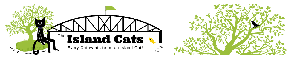 The Island Cats blog