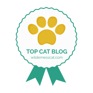 Wildernesscat best cat blog award