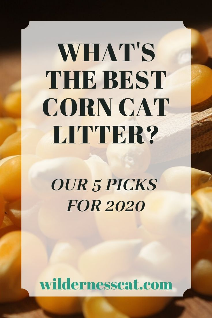 what's the best corn cat litter pin