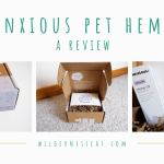 The Anxious Pet Hemp Oil for Cats: Can CBD Hemp Oil Help Cats with Anxiety?