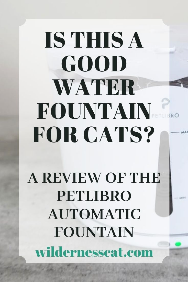 PetLibro water fountain for cats pin 1